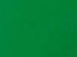 Màu xanh lá cây VT2015 (Vertu trong nhà)